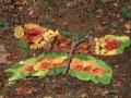 leafy-butterfly
