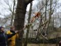 Forest School Training (21).jpg