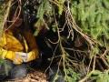 Forest School Training (23).jpg