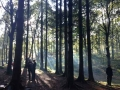 Forest School Training (3).jpg