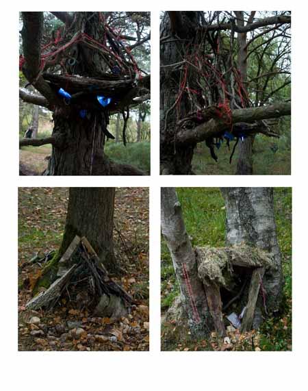 Fairy Houses 2