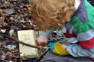 Forest School Reflections 3