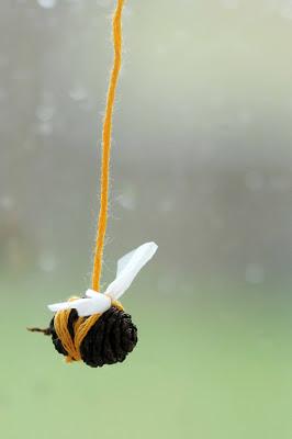 Alder Bees 1