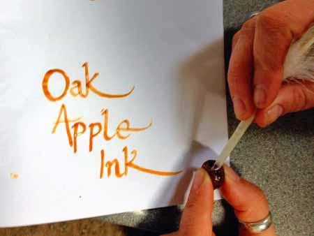 How to make oak apple ink